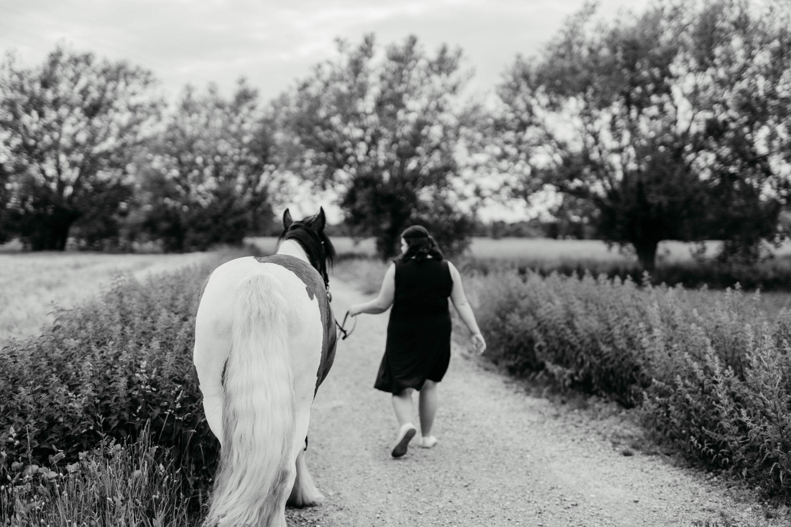 Portraitfotos mit Pferden
